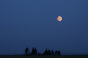 Pejzaż z pełnią księżyca