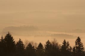 Mgły w Kotlinie Kłodzkiej